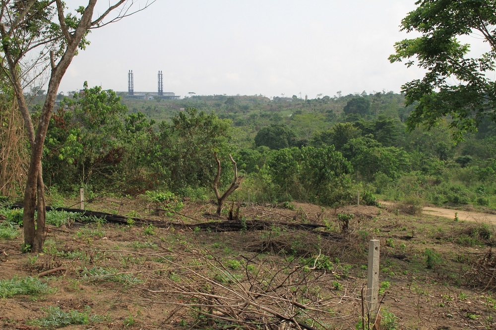 Landscape at Dibamba 1, in the background the power plant on the site (March 2011).